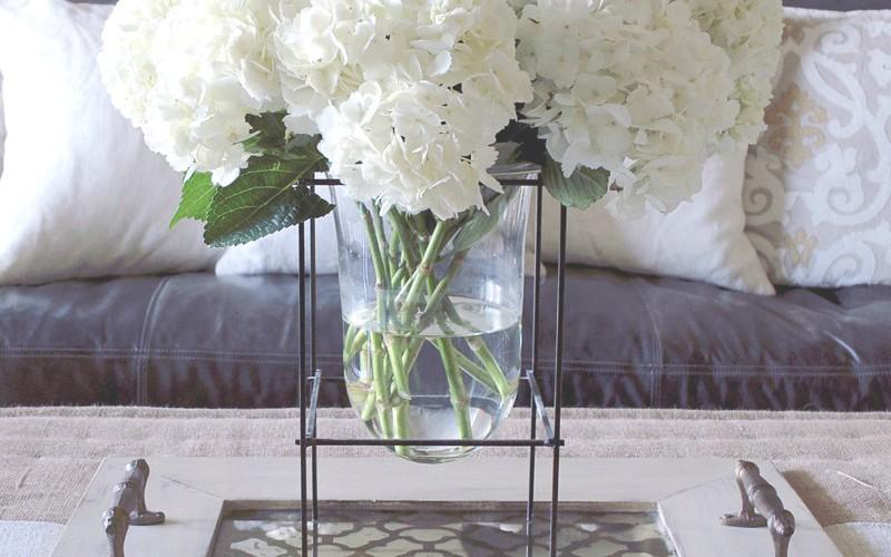 The Glass Vase – Embrace The Versatility