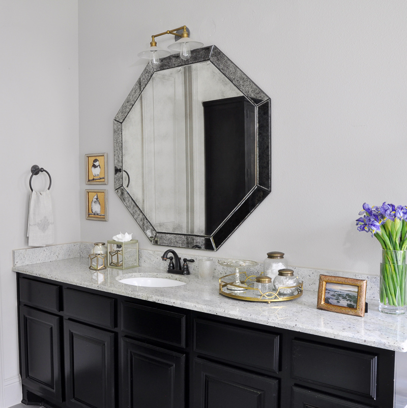 Master Bathroom with Black Cabinets and Beautiful Accesories