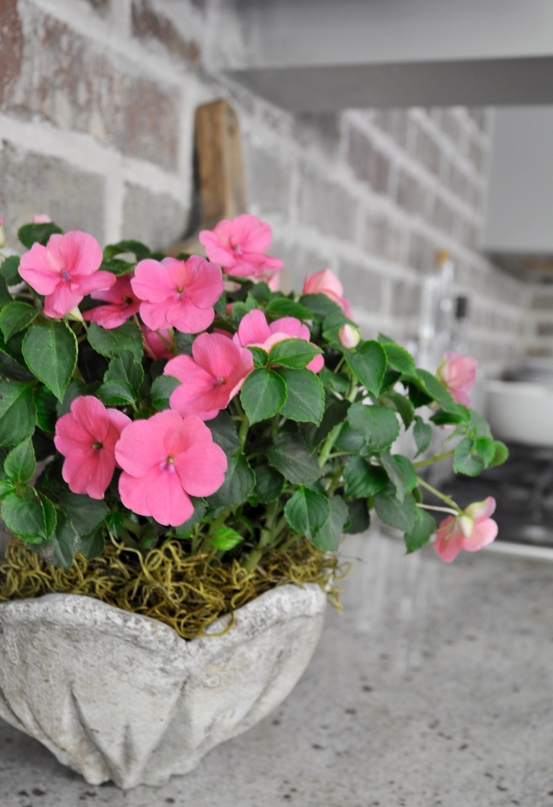Summer Home Tour Pink Potted Flowers in Kitchen with Brick Backsplash_