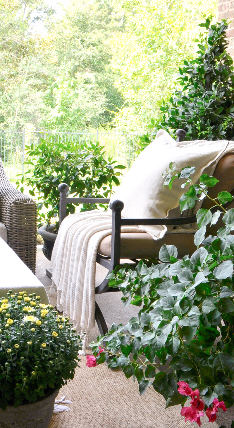 back-patio-designed-for-fall_