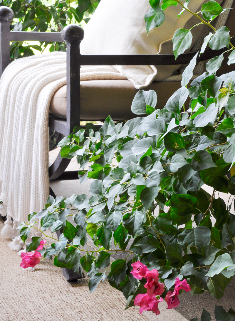early-fall-patio-with-beautiful-potted-plants_