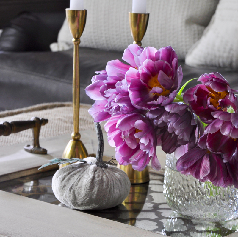 beautiful-fall-coffee-table-vignette-on-mirrored-tray_