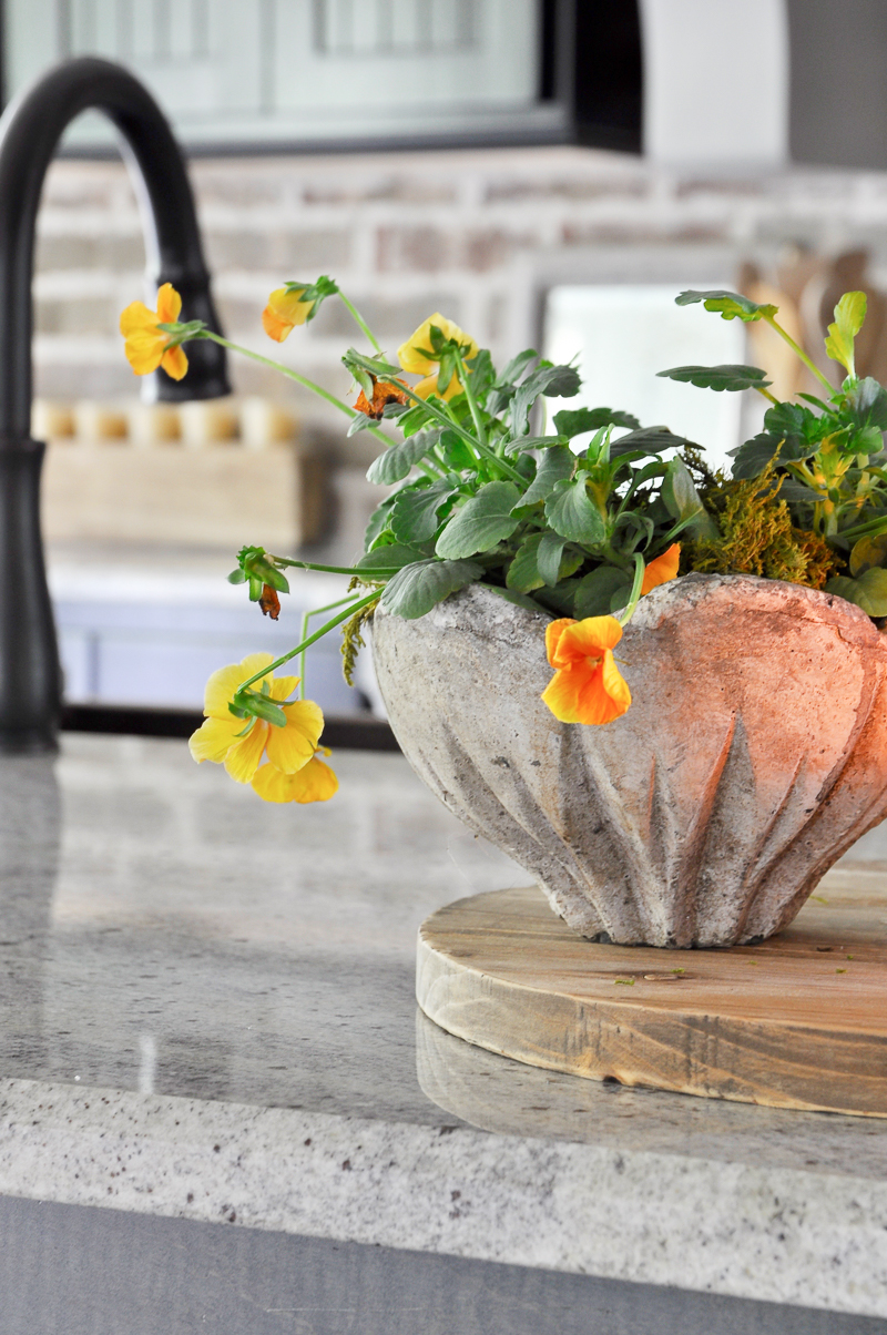 pansies-in-a-pretty-pot-for-fall-decorating