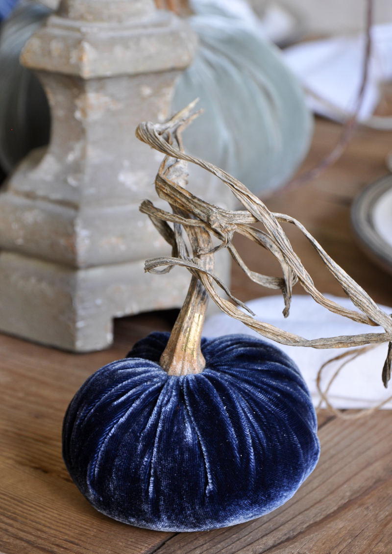 beautiful-blue-velvet-pumpkin