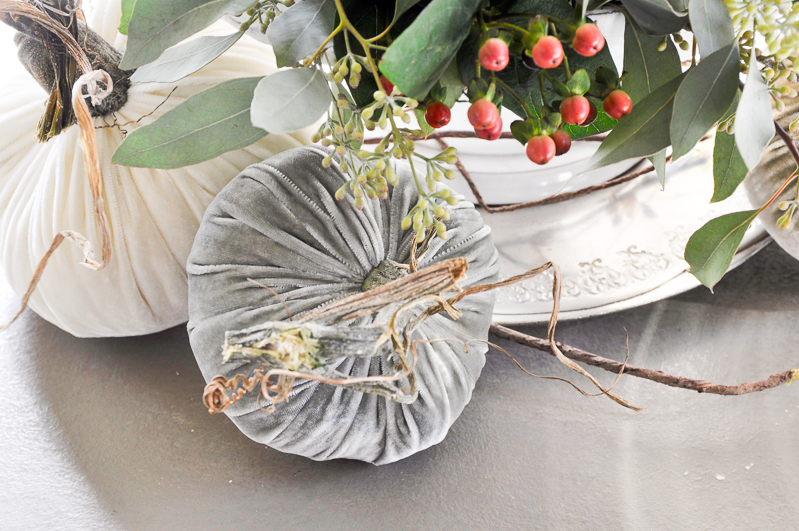 beautiful-neutral-velvet-pumpkins_