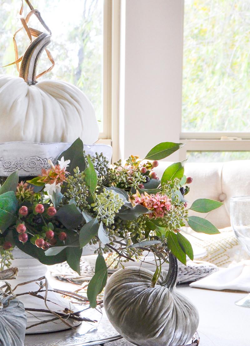 beautiful-white-velvet-pumpkin-hot-skwash_