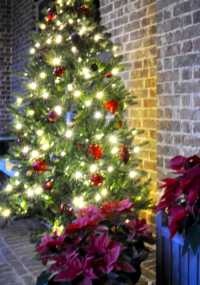 christmas-tree-porch-decoration_