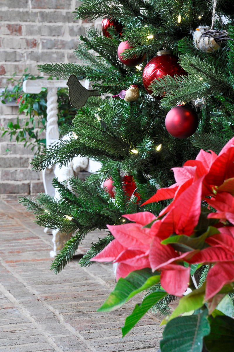 poinsettia-and-tree-on-christmas-porch