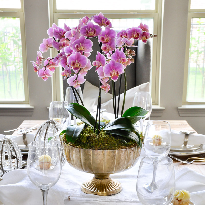 gorgeous orchid arrangement in brass container