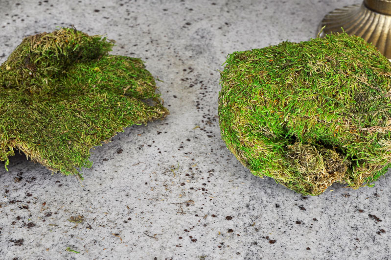 moss for arrangement