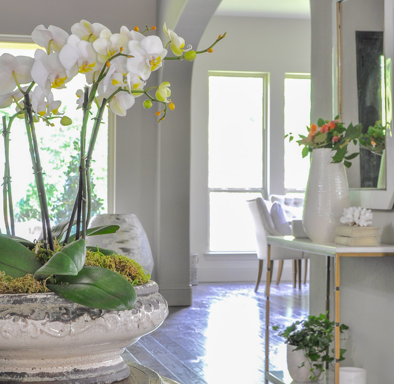 have you been looking for summer home design inspiration inspiring home designs for your summer house