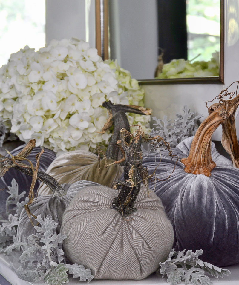 fall home with beautiful velvet pumpkins
