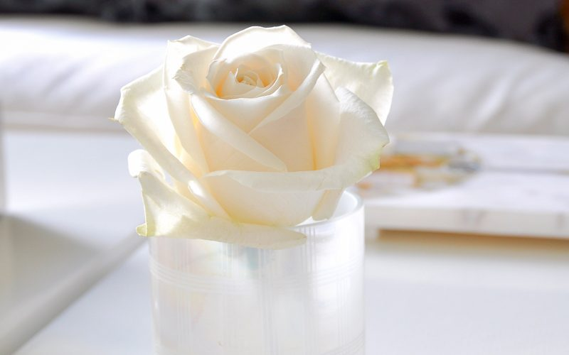 3 Ways to Arrange Roses