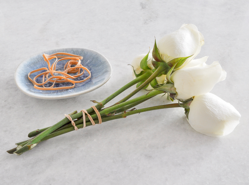 roses gathered in rubber bands