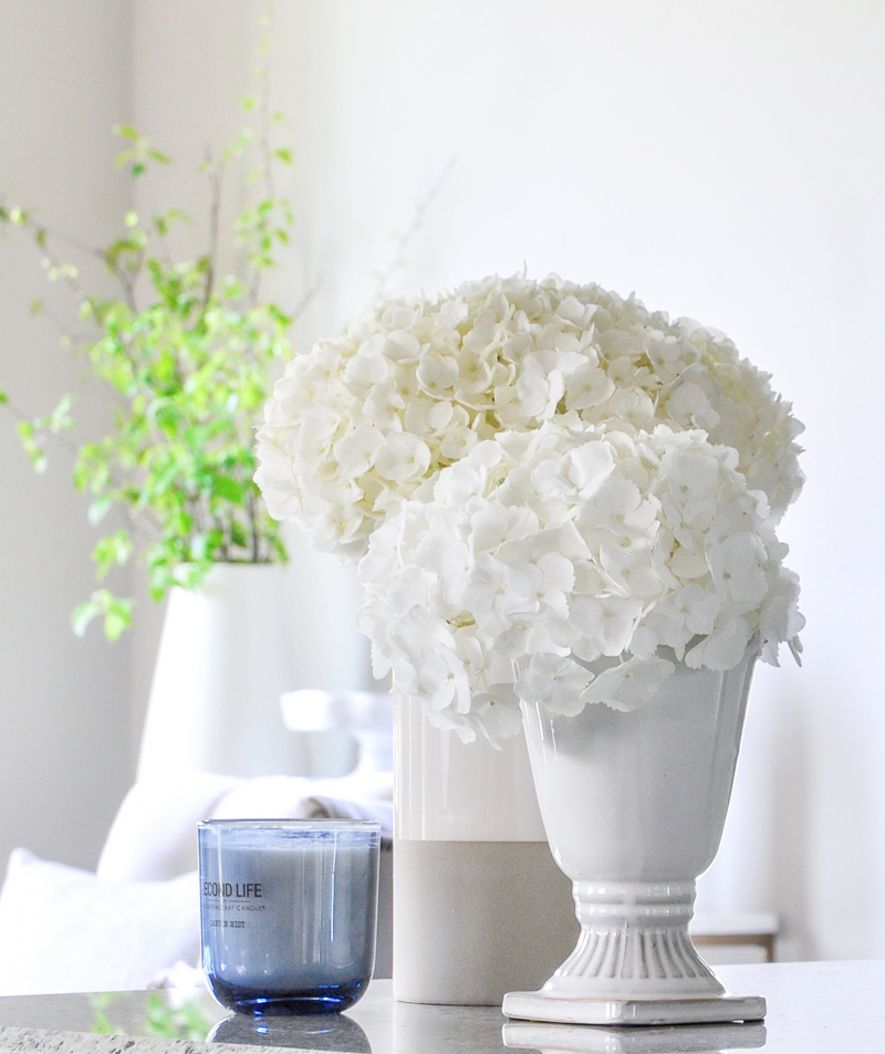 hydrangeas in white vases