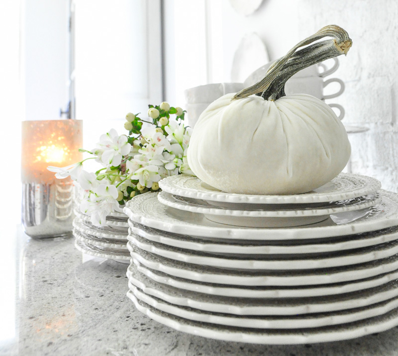Kitchen dinnerware white velvet pumpkin