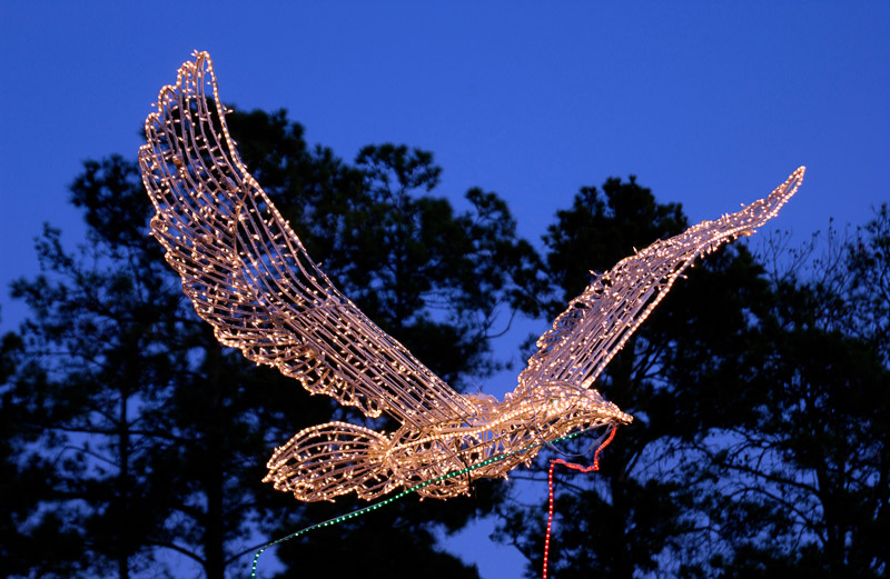 woodlands holiday doves