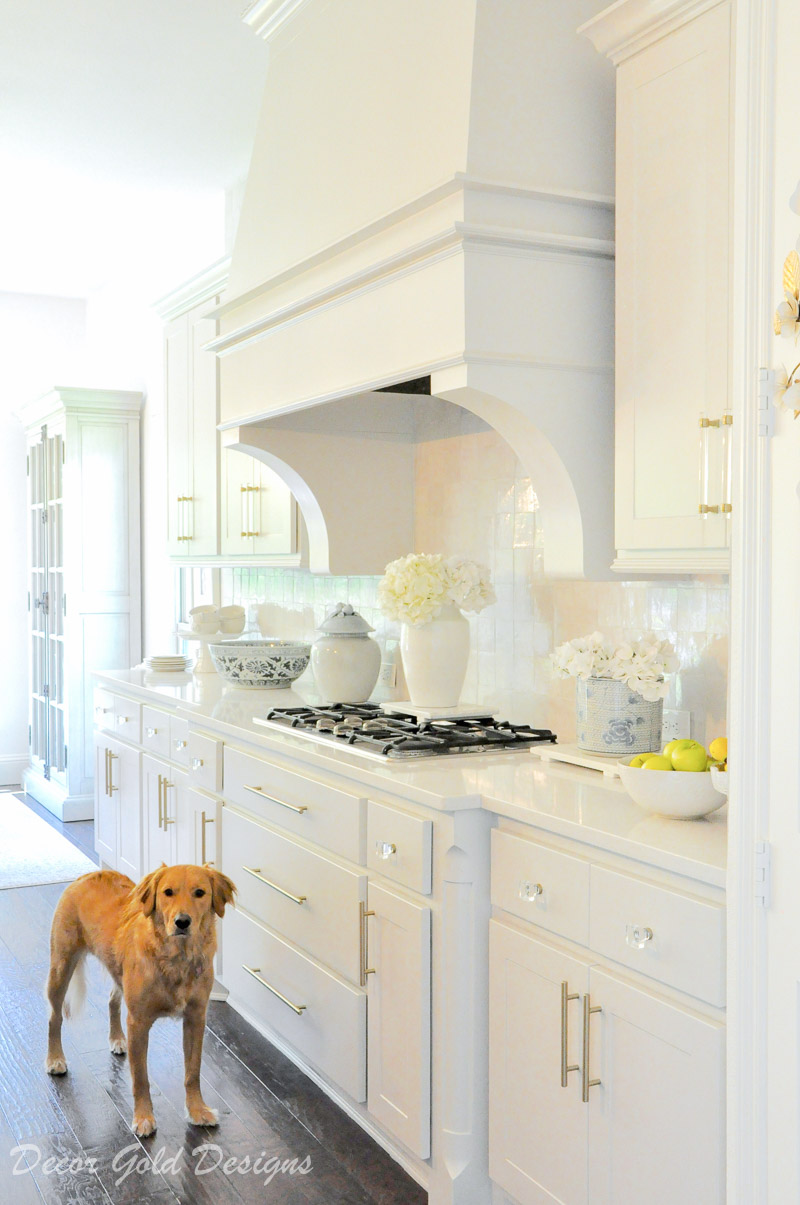 kitchen counter styling ideas ava golden retriever