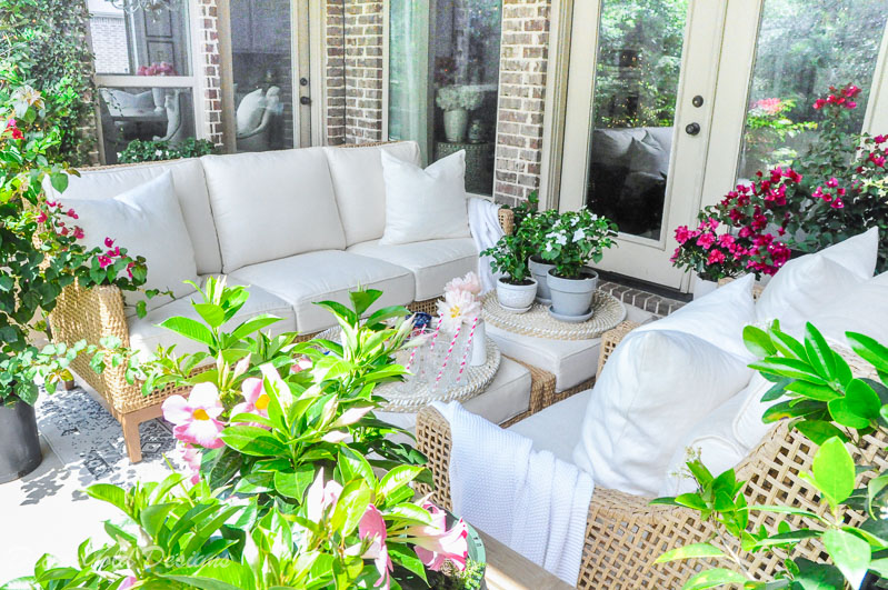 Summer patio reveal beautiful furniture flowering plants