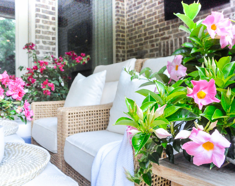 Summer patio reveal comfortable chairs