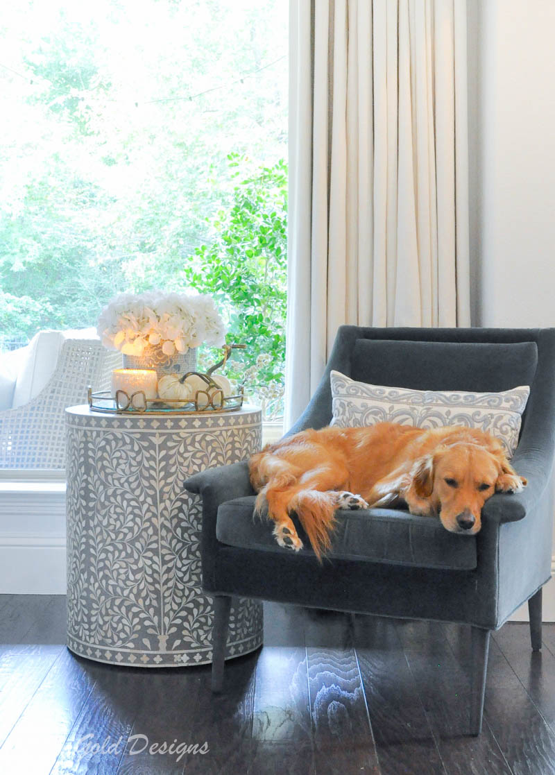 Sophisticated fall home tour white pumpkins golden retriever