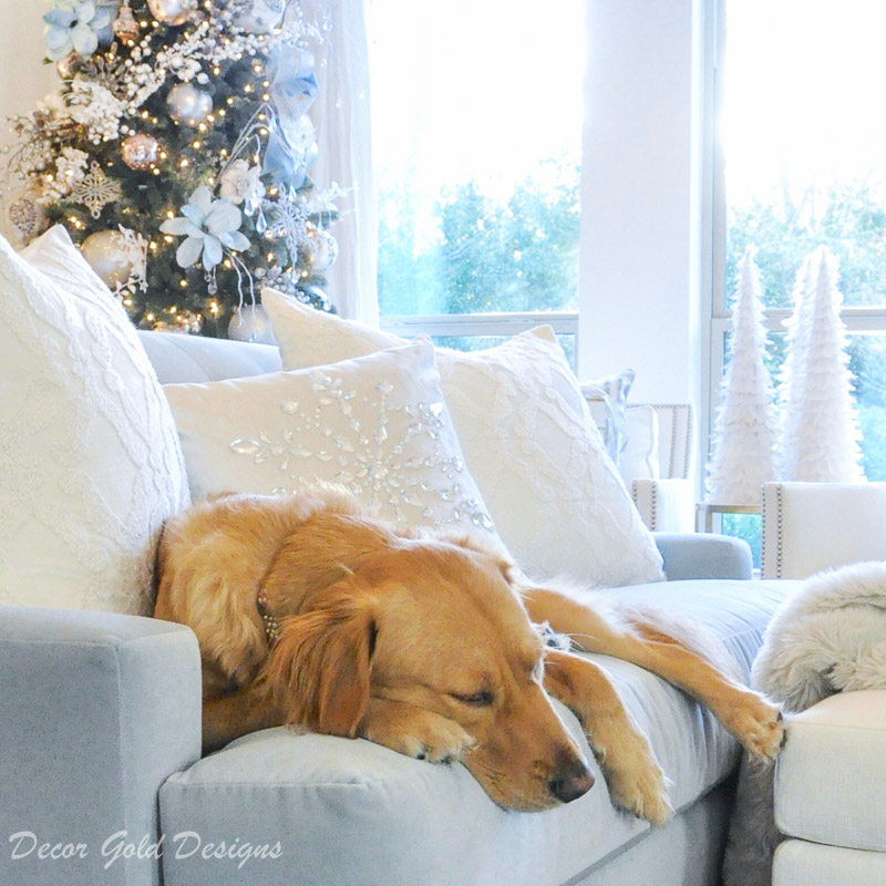 Elegant Christmas bedroom golden retriever sleeping