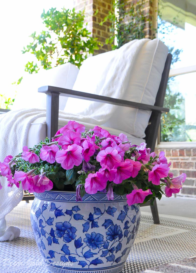 Spring ready patio blue white planter pink garden flowers